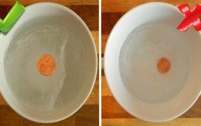 moneta nel frigo