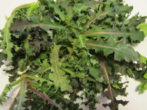 erbe in cucina