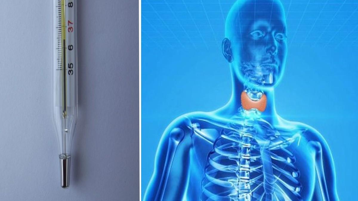 rimedi casalinghi per la perdita di peso nella tiroide