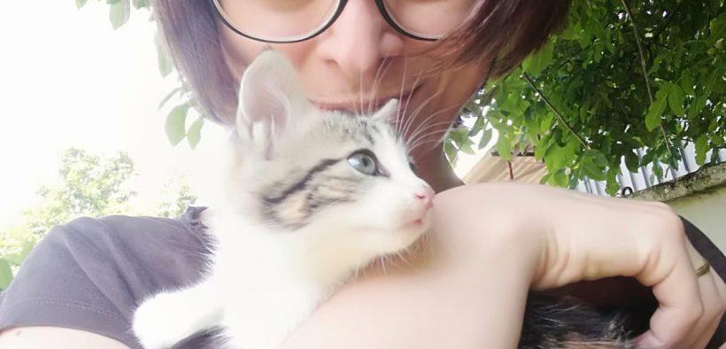 i gatti fanno bene
