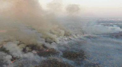 incendi thailandia