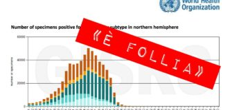 influenza stagionale grafico oms